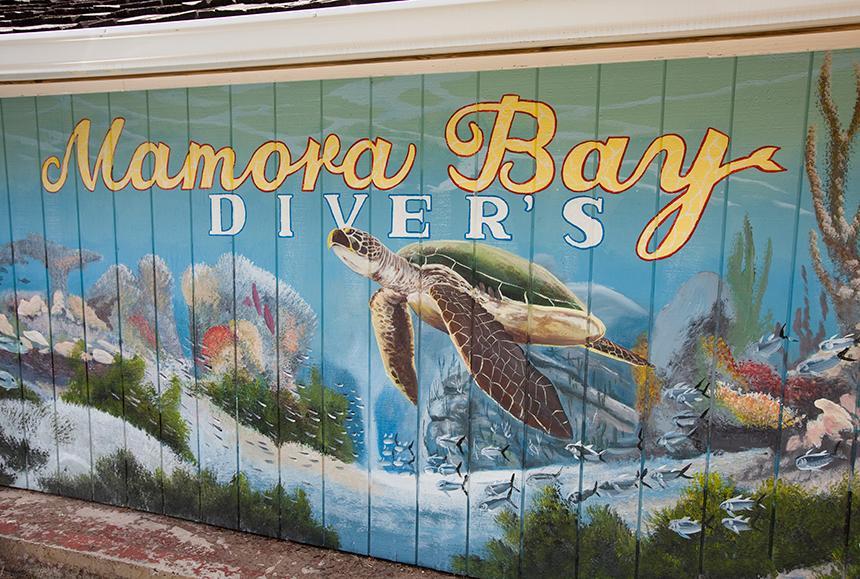 St James Club & Villas - St James Club & Villas - Mamora Bay Divers